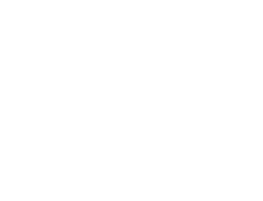 The Flying Carpet Theatre Presents. Alping Hong: Chasing Chopin.